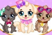 مكياج الكلاب الصغيرة
